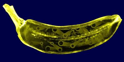 Mechanický banán - obrázek